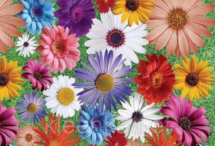 Скатерть клеенчатая на стол Декор с ярким цветочным принтом, фото 2