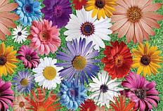 Скатерть клеенчатая на стол Декор с ярким цветочным принтом