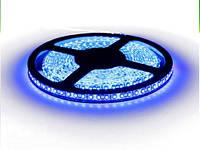 Светодиодная лента LED 3528-120 B синяя, негерметичная, 1м