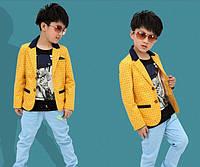 Стильный пиджак  на мальчика Д-134-О, фото 1