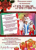 Дед Мороз и Снегурочка, ведущий, не тамада, Новый год