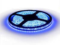 Светодиодная лента B-LED 3528-120 B IP65 синий, герметичная, 5метров, фото 1