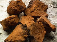 Чага, Березовый гриб (Inonotus obliquus), 100 грамм