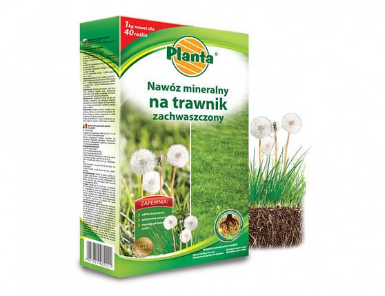 Удобрение для засоренного газона Planta 1кг, фото 2