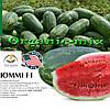 Арбуз ЮММИ F1 / JUMMI F1, LARK SEEDS (США), 1000 семян
