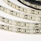 Светодиодная лента B-LED 3528-120 G IP65 зеленый, герметичная, 5метров, фото 3