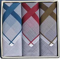 Мужские хлопковые носовые платки Guasch Apolo 96-04