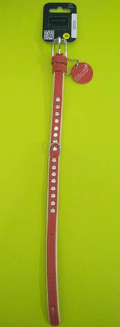 Ошейник премиум двойной со стразамиCollar brilliance ширина 15мм длина 27-36 красный 38003, фото 2