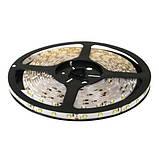 Светодиодная лента B-LED 3528-60 G зеленый, негерметичная, 5метров, фото 4