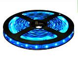 Светодиодная лента B-LED 3528-60 B синий, негерметичная, 5метров, фото 2