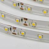 Светодиодная лента B-LED 3528-60 B синий, негерметичная, 5метров, фото 3