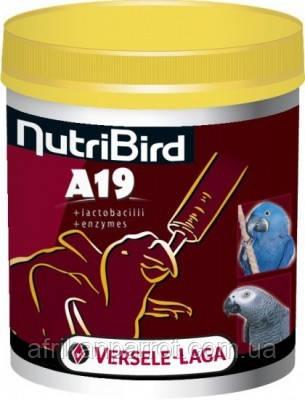 Versele-Laga Искусственное выкармливание птенцов. NutriBird A19 - 800г