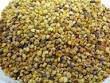 Натуральная пчелиная пыльца( 150г )