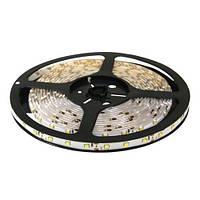 Светодиодная лента B-LED 2835-120 W 14000К, негерметичная, 1м