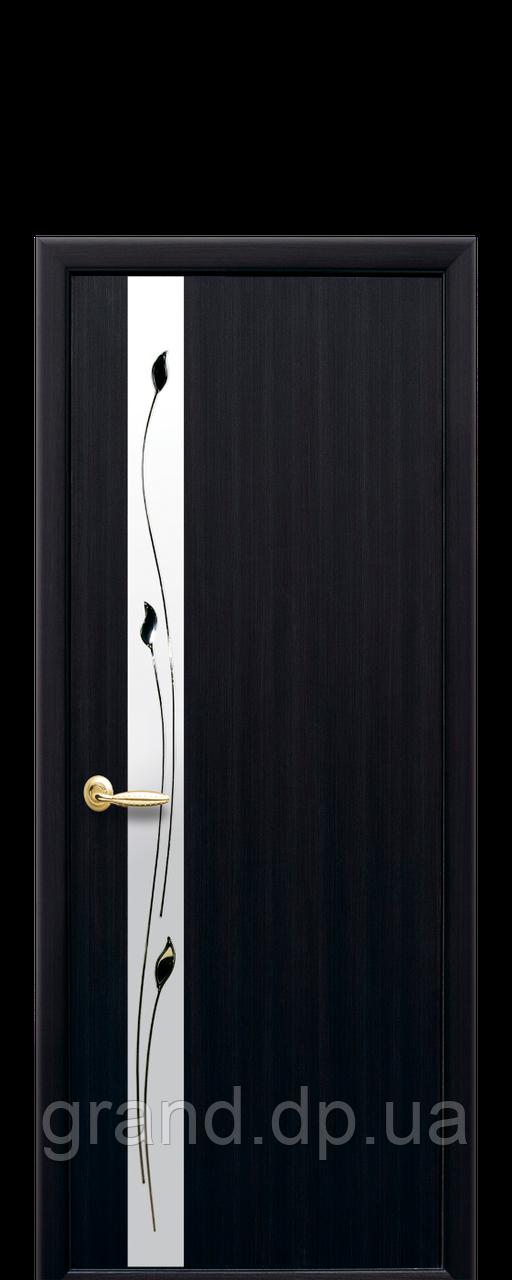 Межкомнатная дверь Злата ПВХ DeLuxe со стеклом сатин и рисунком, цвет венге