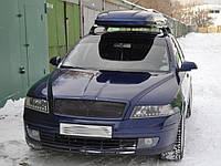 Реснички на фары Skoda Octavia A5 (2005-2009) стеклопластик (под покраску) Orticar