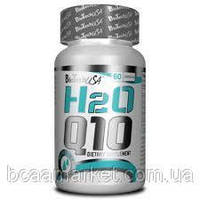 BioTechUSA H2O Q10, caps 60