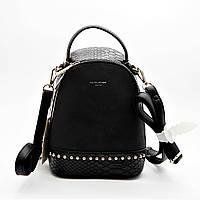 Женский рюкзак DAVID DJONES из искусственной кожи черного цвета DII-450062, фото 1