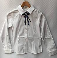 6bc2f28ff18 Детские блузки для школы оптом в Украине. Сравнить цены
