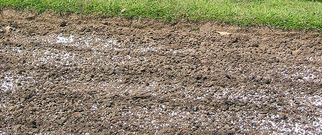 знезараження ґрунту