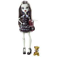 Кукла Монстер Хай Френки Штейн базовая с питомцем  Monster High Frankie Stein Basic