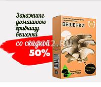 Домашняя грибница вешенки — Собирайте урожай благородных грибов круглый год!