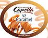 Ароматизатор Capella Caramel V2 (Карамель)
