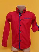 Рубашка подростковаядля мальчиков 12-16 лет, красная