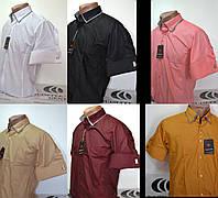 Приталенная рубашка с коротким рукавом под запонку Guiseppe Gentile (цвета и размеры в ассортименте)