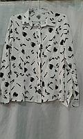 Блуза девочка туфелька