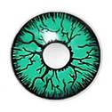 Линзы Темные Зеленые, фото 3