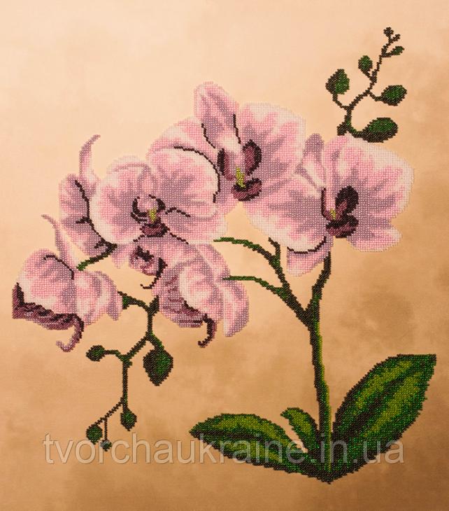 FLF-018 Розовая орхидея. Набор для вышивки бисером на подрамнике