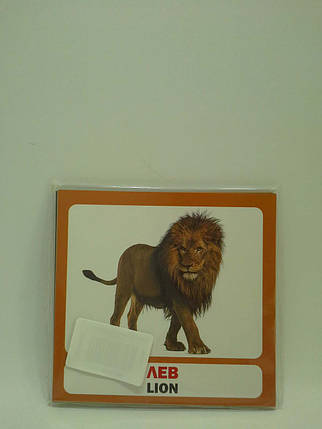 Сова Розвиток малюка Дикі тварини (17 карток), фото 2