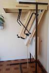 Лестница чердачная Oman Polar 120х70 мм H280, фото 2