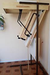 Лестница чердачная Oman Polar 120х60 мм H280