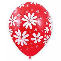 """Воздушные шары """"Ромашка"""" 14""""(35см)  КРИСТАЛЛ  В упак:25шт. Пр-во: Belbal (Бельгия)"""