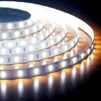 Светодиодная лента B-LED 5630-60 W белый, негерметичная, 5метров, фото 1