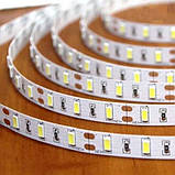 Светодиодная лента B-LED 5630-60 W белый, негерметичная, 5метров, фото 3