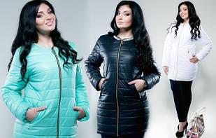 Одежда верхняя осень, зима ( батал)