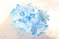 Декоративные цветы лилии диаметр 5 см, голубого цвета, фото 1