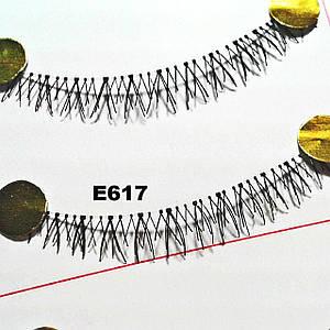 Ресницы на нижнее веко по 10 пар (16 видов)