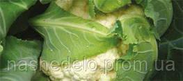 Семена цветной капусты Америго F1 2500 семян Syngenta
