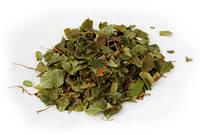 Боровая матка трава 50 грамм (Ортилия однобокая)