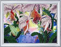 Набор для вышивки бисером Сияние орхидей БФ 230