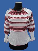Блуза Орнамент (Женские и мужские вышиванки)