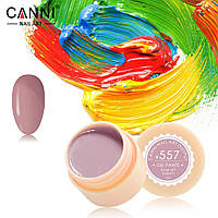Гель краски и гель лак 2 в 1 Canni, №557