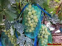Защитная сетка от ос для кистей винограда (2 кг)