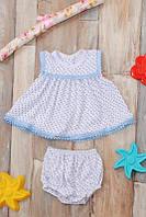 Комплект платье+трусики (белый, темно-синий)
