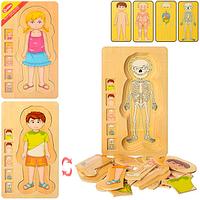 Деревянная игрушка гардероб RMT- MD 1181 (обучающий,2вида(девочка,мальчик),29*17*2см)