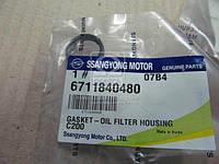Уплотнительное кольцо масляного фильтра (пр-во SsangYong) 6711840480